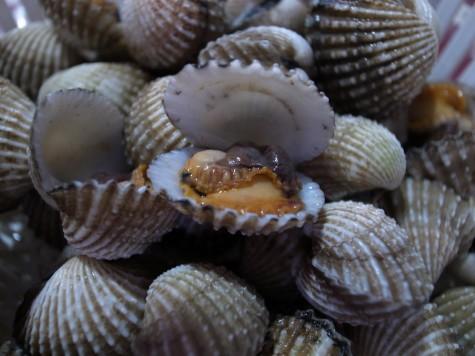 タイのミニ赤貝
