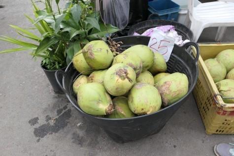 チェンマイのココナッツ